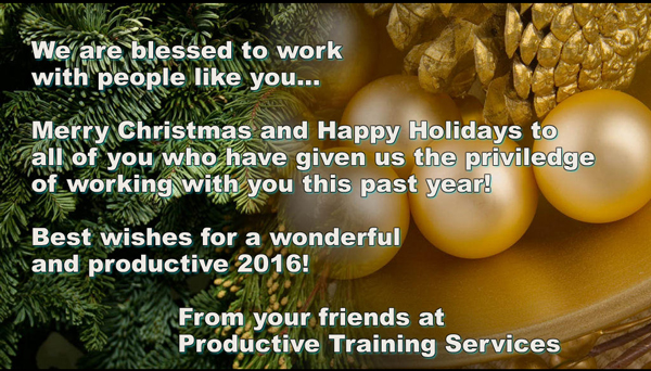 A Holiday wish for you from Joe Tabers and the Productive Training team